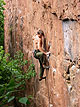 Thomas Vergunst on 'Static Patterns' 29, Kloof Gorge