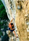 Gordon Forges on 'Paws' 26, Oudtshoorn